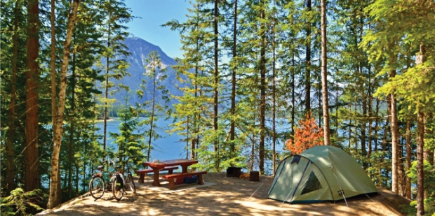 The Discover camping reservation system allows anyone to book one of about 5,800 campsites in B.C.'s provincial parks system, along with backcountry permits. (Discover Camping)